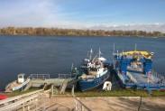 Золотая осень на Волге в Кстовском районе - Безводное