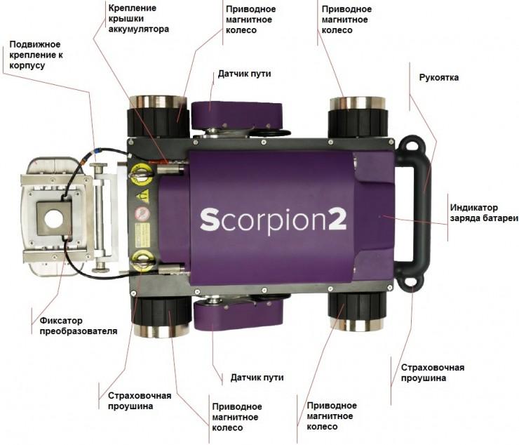 Silverwing Scorpion2