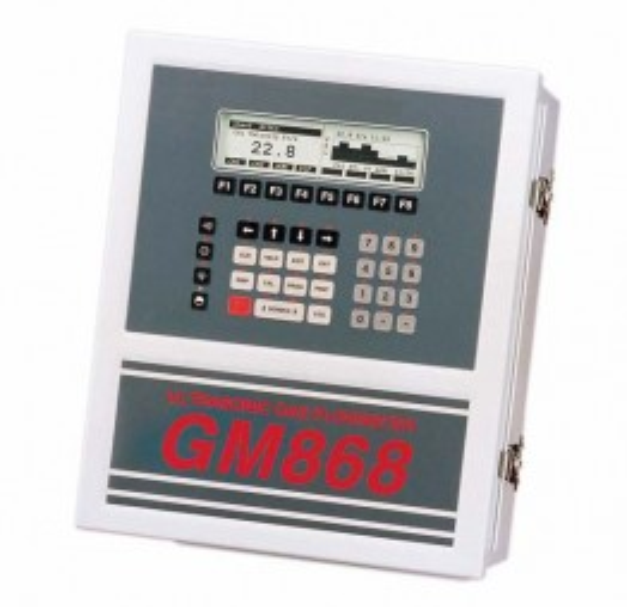 GE Sensing DigitalFlow GM868